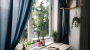 Lưu ngay list homestay vững giá bất kể dịp lễ ở Nha Trang