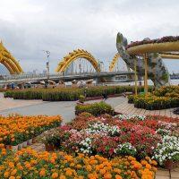 Nhớ nhanh những điểm chụp hình xuân siêu xinh tại Đà Nẵng