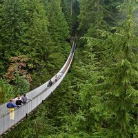 Top 4 trải nghiệm trên cả tuyệt vời tại thành phố Vancouver