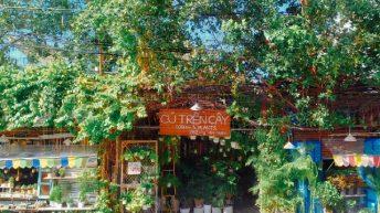 Vườn Cú Trên Cây – điểm check-in được săn đón giữa lòng Tp.HCM