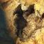 Những vùng đất để đi bộ cùng khủng long chỉ có ở nước Mỹ